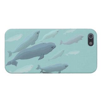 iPhone de la ballena 5 regalos de la ballena de la iPhone 5 Funda