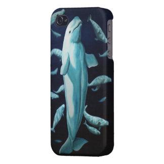 iPhone de la ballena de la beluga 4 casos de la ba