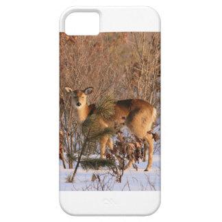 iPhone Deer Case