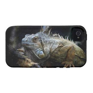 iPhone del reptil del lagarto de la iguana 4 casos iPhone 4/4S Carcasas