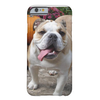 iPhone divertido lindo del dogo inglés 6 cubiertas Funda Para iPhone 6 Barely There