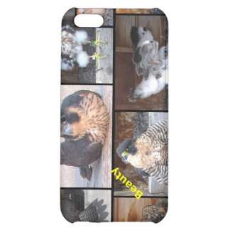 iPhone duro 2012 del caso de Shell de los Falcons