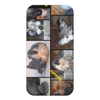 iPhone duro 2012 del caso de Shell de los Falcons  iPhone 4 Protectores