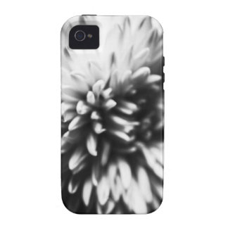 iPhone Flower Photograph iPhone 4/4S Case