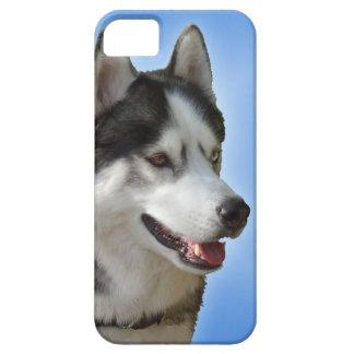 iPhone fornido 5 casos del Malamute del husky Funda Para iPhone 5 Barely There