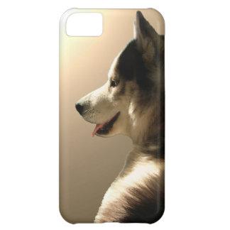 iPhone fornido 5 casos del Malamute del husky sibe Funda Para iPhone 5C
