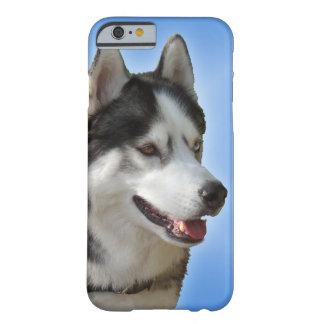 iPhone fornido 6 casos del Malamute del husky Funda Para iPhone 6 Barely There