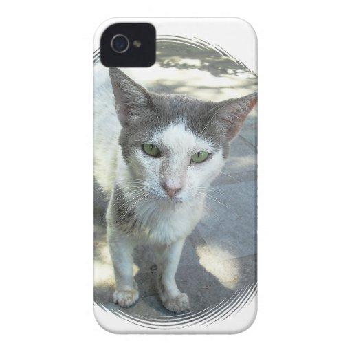 iPhone gris fresco 4/4S de los oídos de los ojos iPhone 4 Case-Mate Cobertura