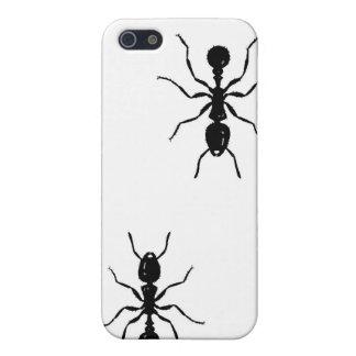 iphone, hormiga iPhone 5 cobertura