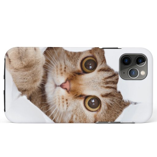 iPhone  iPad case