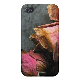 iPhone macro 4 de la acuarela de los rosas muertos iPhone 4 Protectores