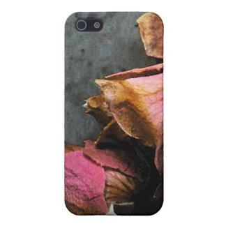 iPhone macro de la acuarela de los rosas muertos 5 iPhone 5 Cárcasa