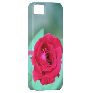 Iphone Name Case cover