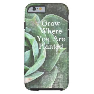 Iphone personalizado Succulent color de rosa 5 Funda De iPhone 6 Tough