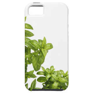 iPhone SE + iPhone 5/5S herbal case