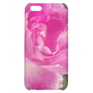 iPhone subió jardín rosado ornamental 4