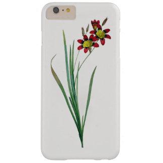 iPhone tricolor 6/6S del Ixia más el caso de Funda Barely There iPhone 6 Plus