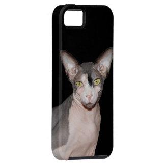 iPhone Vibe Case | Sphynx Cat Ninja black iPhone 5 Case