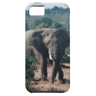 iphone vibe image elephant iPhone SE/5/5s case