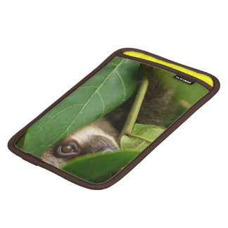 Ipod mini sleeve with peeping two-toed sloth on it sleeve for iPad mini
