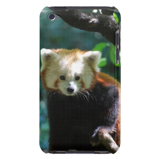 iPod Touch Case - Customized