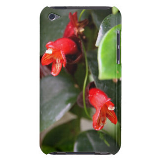 iPod Touch Case - Lipstick Vine
