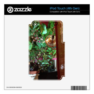 iPod Touch Skins with Indoor Nature Photo