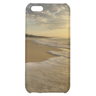 iPod Touch Speck Fitted Hard Shell Custom Case Case For iPhone 5C