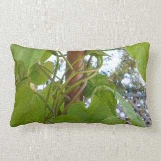 Ipomea cushion tricolor Sketcher