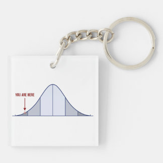 IQ Bell Curve You Are Here Keychain