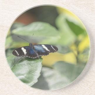 Ir volando azul de la mariposa posavasos cerveza