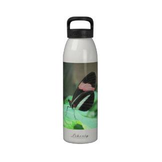 ¡Ir volando con su hidración! Botellas De Agua Reutilizables