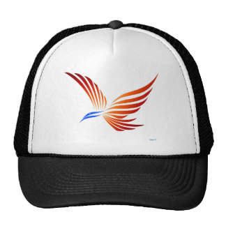 Ir volando gorra