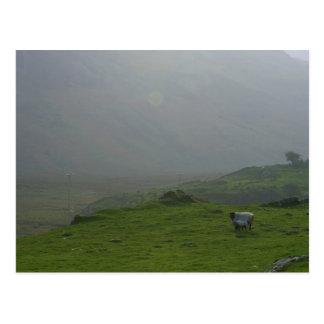 Ireland A Sunrise In Ireland In The Inneh Vally Postcard