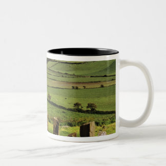 Ireland, County Cork. The Dromberg Stone Two-Tone Coffee Mug