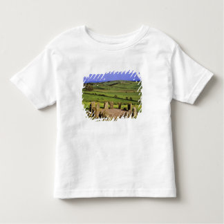 Ireland, County Cork. The Dromberg Stone Toddler T-shirt