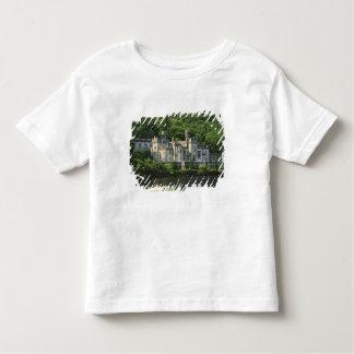Ireland, County Galway, Connemara. View of the Tee Shirt