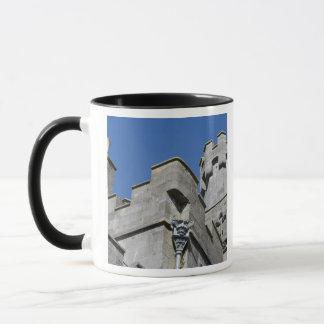Ireland, County Kilkenny, medieval castle. Mug