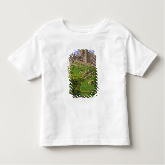 Ireland, County Tipperary. View of the Rock of Toddler T-shirt