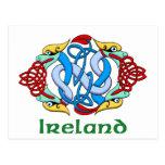 Ireland - Dragon Knot Postcards