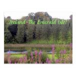 Ireland( Emerald Isle) Postcard