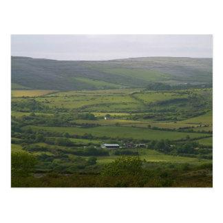 Ireland Fields Burren Farms Postcard