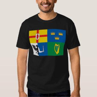 Ireland (Four Provinces Flag) Shirt