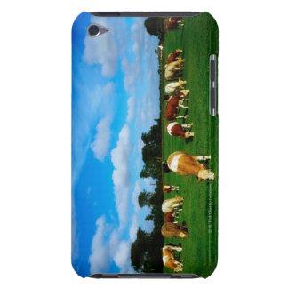 Ireland, Herd Of Cle Grazing iPod Case-Mate Case