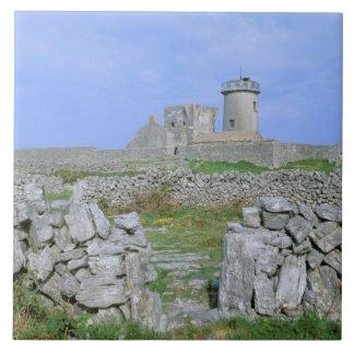 Ireland, Inishmore, Aran Island, Dun Aengus Fort Tile