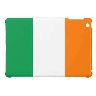 Ireland iPad Mini Case
