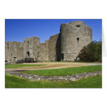 Ireland, Roscommon Castle. View of Card