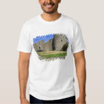 Ireland, Roscommon Castle. View of T Shirt