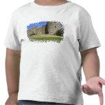 Ireland, Roscommon Castle. View of Tshirts