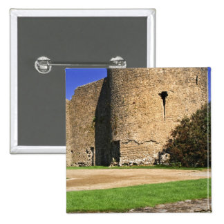 Ireland, Roscommon. View of Roscommon Castle. Pinback Button